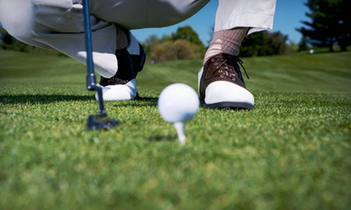 First Coast Golf Academy - Sturgeon Bay: One or Three One-Hour Golf Lessons with Video Swing Analysis at First Coast Golf Academy in Sturgeon Bay (Up to 52% Off)