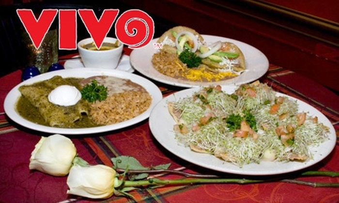 Vivo - Multiple Locations: $15 for $30 Worth of Traditional Tex-Mex Fare at Vivo