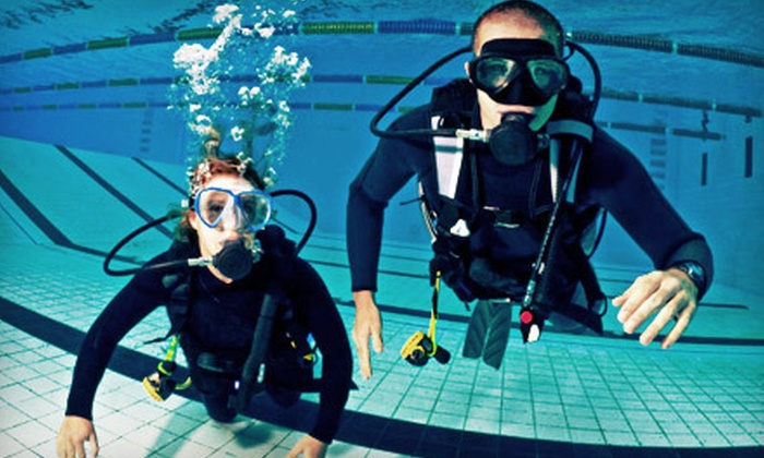 Berry Dive Center - Northfield: Full PADI Open-Water or Advanced Certification or Referral Course at Berry Dive Center in Northbrook (Up to Half Off)