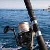Up to 51% Off Deep-Sea Fishing in Key West
