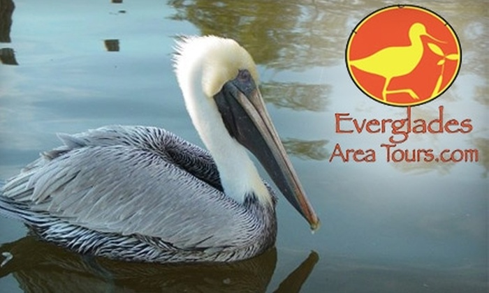 Everglades Area Tours - Multiple Locations: $39 for Two-Hour Powerboat Birding and Photography Tour from Everglades Area Tours ($79.95 value)