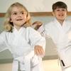Up to 45% Off at Ingram's Okinawan Karate