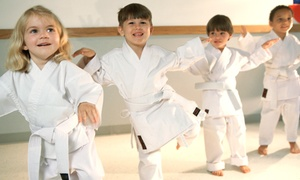 Ingram's Okinawan Karate: One Month of Unlimited Kids' Karate Classes at Ingram's Okinawan Karate (Up to 51% Off)