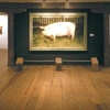 55% Off Art-Museum Membership in Chadds Ford