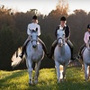 Up to 54% Off Riding Lessons at A&T Equestrian