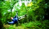 Up to 54% Off Zipline Tour