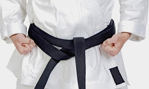 Enshin Karate: Six Weeks of Unlimited Karate or Martial Arts Classes for One or Two at Enshin Karate (80% Off)