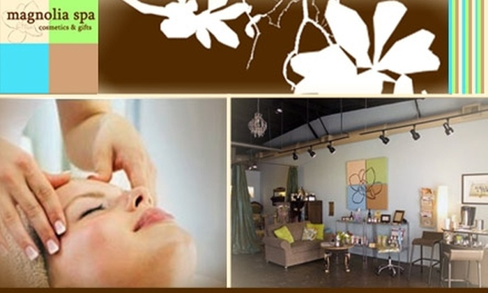 Magnolia Spa  - Lockeland Springs: $50 for Microderm-abrasion at Magnolia Spa ($100 Value)