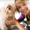 Up to 66% Off at Meriden Animal Hospital