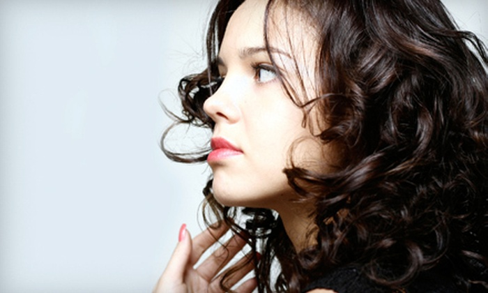 E'Clips Salon - Grove Street,Downtown,Historic Downtown: $50 Toward Haircuts, Styling, and Coloring