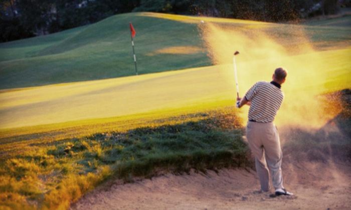 The Golf VIP Card - Downtown: $25 for a 2012 Austin Golf VIP Discount Card from The Golf VIP Card ($50 Value)