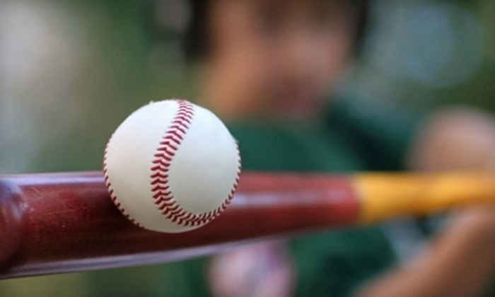 Coach Vic's Batting Cage and Baseball Academy - Hillsboro: Batting Coaching Sessions at Coach Vic's Batting Cage and Baseball Academy in Hillsboro. Two Options Available.