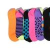 21-Pack of Everlast Women's Color No-Show Socks