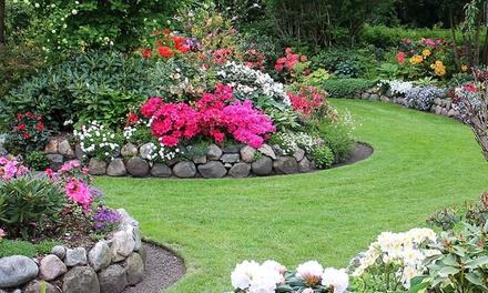 Groupon giardino for Groupon giardino