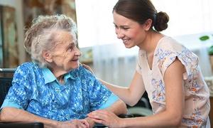 Kar-Gorup: Kurs online: opiekun osób starszych lub dzieci z certyfikatami za 99 zł w Kar-Group