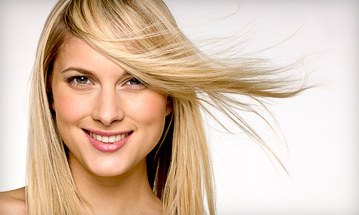 Nelson Group Salon - Palatine: Haircut and Blow-Dry or Full Tri-Color Highlights and Blow-Dry at Nelson Group Salon in Palatine (Up to 62% Off)