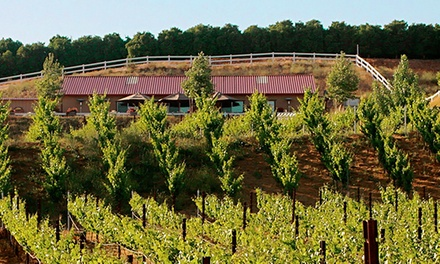Barrel Tasting Package for One or Two with Meat and Cheese Platter at Frangipani Estate Winery (Up to 55% Off)