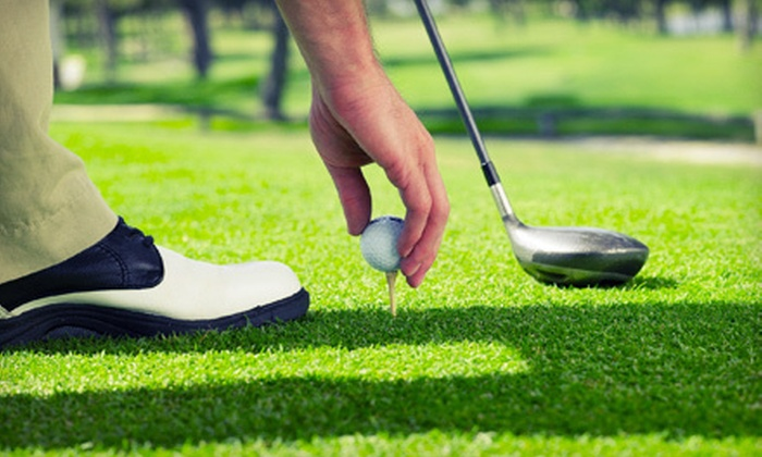Adam Novosad - Gonzales: One or Two 45-Minute Private Golf Lessons with CPGA Professional Adam Novosad (Up to 55% Off)