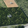 50% Off Hedge-Maze Experience at The Berry Barn