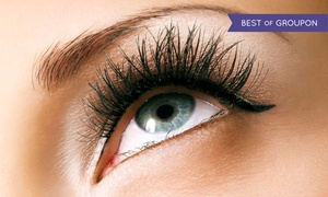 Seasons Spa and Salon: $59 for Full Set of Flare Lash Extensions at Seasons Spa and Salon ($150 Value)
