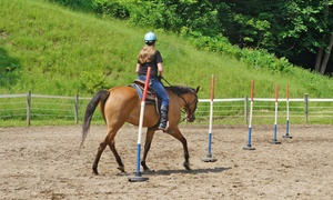 Shekinah Western Ranch Camp: $350 for a Five-Day Overnight Camp and Horseback-Riding Lesson at Shekinah Western Ranch Camp ($550 Value)