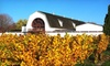 Millbrook Winery - Millbrook: Winery Tour and Tasting for Two, Four, or Six with Wineglasses and Optional Shuttle at Millbrook Winery (Up to 58% Off)