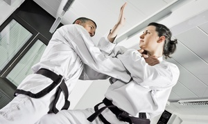 Cho's Martial Arts: Ten or Twenty Martial Arts Classes with Uniform at Cho's Martial Arts (Up to 91% Off)