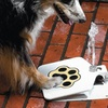 Automatic Outdoor Pet Water Fountain