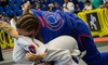 Fight Sports The Falls - Miami: $60 for $200 Worth of Martial-Arts Lessons — Fight Sports The Falls