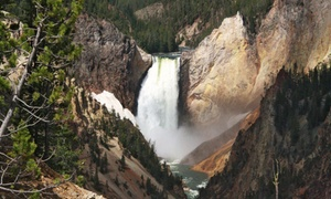 2- Or 4-day Grand Teton And Yellowstone Tour From Brushbuck Wildlife Tours. Price Per Person Based On Double Occupancy.