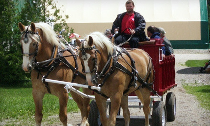 Humes Horse and Carriage Rides - Middlesex Centre: 60-Minute Wagon Ride with Mid-Ride Bonfire for Two or Four from Humes Horse and Carriage Rides (Up to 72% Off)