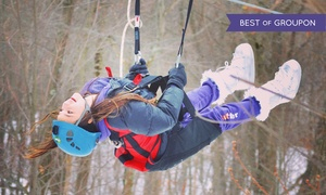 Zoom Ziplines: Two-Hour Zipline Experience for One or Two at Zoom Ziplines (Up to 38% Off)