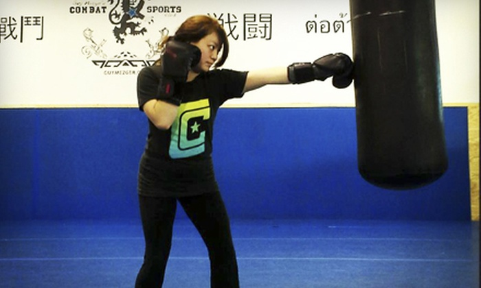 Guy Mezgers Combat Sports Club - Addison: Ten Classes or One Month of Unlimited Boxing and Martial Arts at Guy Mezger's Combat Sports Club (Up to 89% Off)