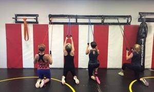Myrmidon Training Systems: Four Weeks of Gym Membership at Myrmidon Training Systems (69% Off)