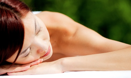 $69 for One 60-Minute BioMat-Massage Session at The Center for Massage & Holistic Therapy ($150 Value)