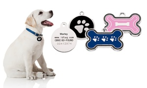 SmartTag Pet ID: SmartTag, Duplicate Tag, and One-Year, Five-Year, or Lifetime Pet-Protection Plan from SmartTag Pet ID (Up to 60% Off)