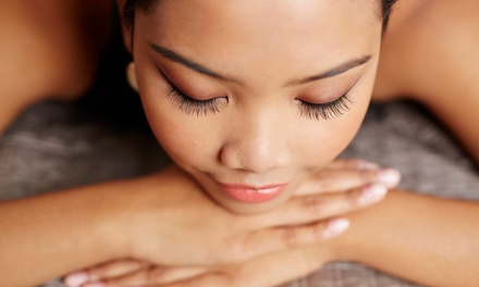 One Full Set of Eyelash Extensions with Optional Fill at Derm Appeal (Up to 75% Off)