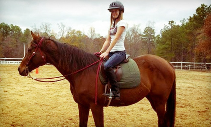 Fasco Farms - Hampton: Two or Three 60-Minute Horseback-Riding Lessons or a Two-Hour Riding Party at Fasco Farms LLC (Up to 64% Off)