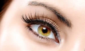 The Eyelash Connection: Lash Extensions with Option for Touchup, Lash Perm at The Eyelash Connection (Up to 52% Off)