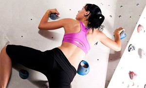 Pure Bouldering Gym: One- or Three Month Gym Membership for One with Shoe Rental at Pure Bouldering Gym (Up to 53% Off)