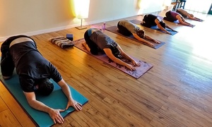 The Center For Living Well: Up to 71% Off Yoga Classes & Yoga Wellness Services from The Center For Living Well. Four Options Available.