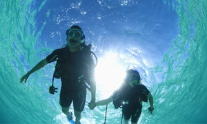 Amazing Sea World: 150-Minute Scuba Diving Experience at Amazing Sea World (64% Off)