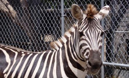 Animal world and snake farm zoo coupons