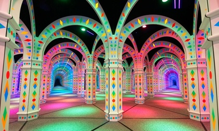 Admission for Two, Four, or Six People to Amazing Mirror Maze (50% Off)