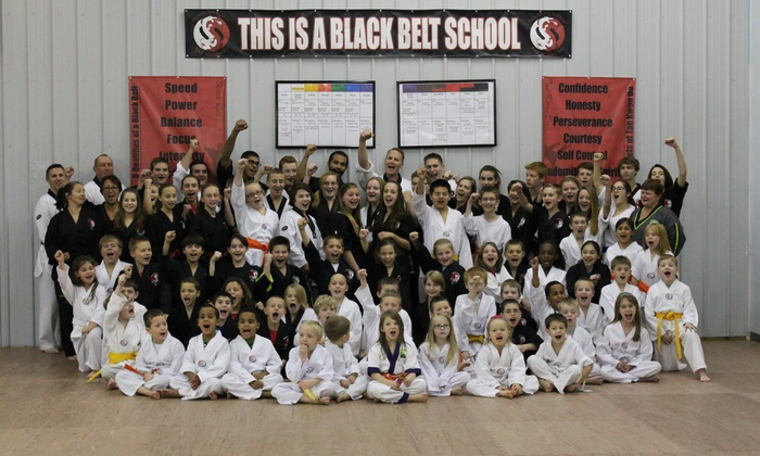 Dover Dragons TKD - Weigelstown: Up to 75% Off Martial Arts Classes  at Dover Dragons TKD