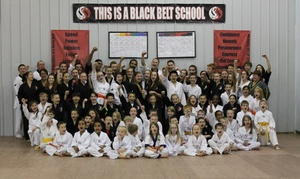 Dover Dragons TKD: Up to 75% Off Martial Arts Classes  at Dover Dragons TKD