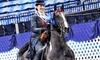 Timbermist Farm - Raintree Lake Estates: $70 for Four Private Horseback Riding Lessons at Timbermist Farm ($160 Value)