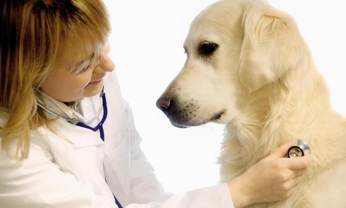 Oak Brook Pet Hospital - Oak Brook: Up to 56% Off dog or cat vaccine package at Oak Brook Pet Hospital