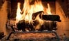 The Fireplace Doctor of Hampton: $49 for a Chimney Sweeping, Inspection & Moisture Resistance Evaluation for One Chimney from The Fireplace Doctor ($199 Value)
