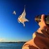 Up to 54% Off Kayak Photo Safari